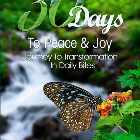 http://highlydemanded.org/wp-content/uploads/2016/05/30-days-of-peace-joy-front-540x540.jpg